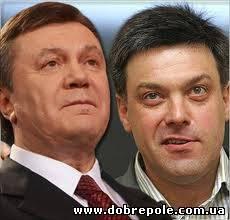 ПР надеется на переизбрание Януковича на посту президента