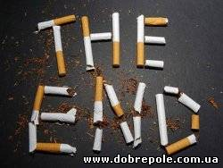 Дело «табак» - в Украине раскрыто крупнейшее подпольное производство табачных изделий