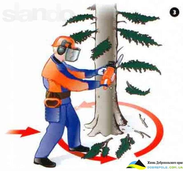 Валка деревьев в Добропольском районе и в Доброполье