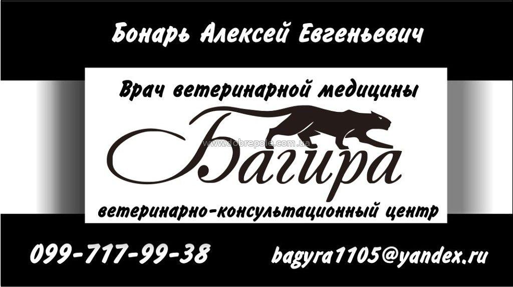 ПУНКТ ветеринарной помощи «БАГИРА»